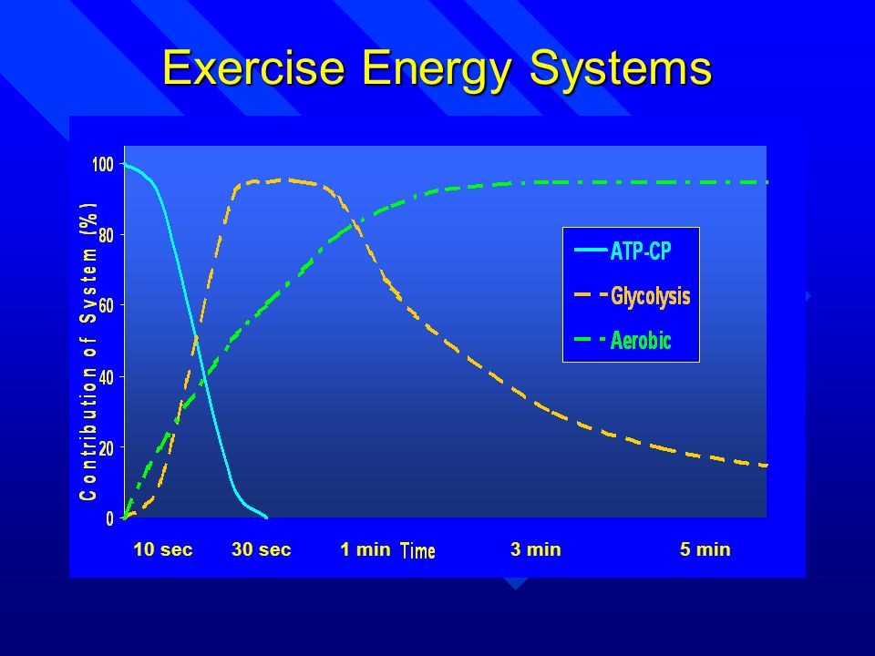 10 sec 30 sec 1 min 3 min 5 min Exercise Energy Systems