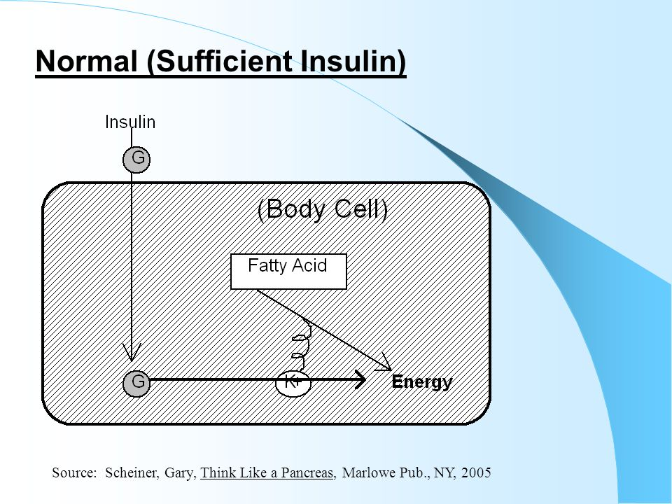 Normal (Sufficient Insulin) Source: Scheiner, Gary, Think Like a Pancreas, Marlowe Pub., NY, 2005