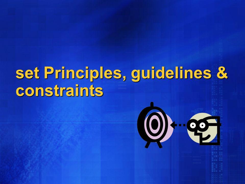 set Principles, guidelines & constraints