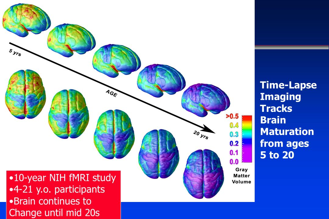 Time-Lapse Imaging Tracks Brain Maturation from ages 5 to 20 10-year NIH fMRI study 4-21 y.o. participants Brain continues to Change until mid 20s