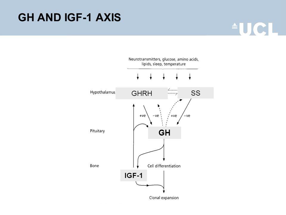 GH AND IGF-1 AXIS GHRH SS GH IGF-1