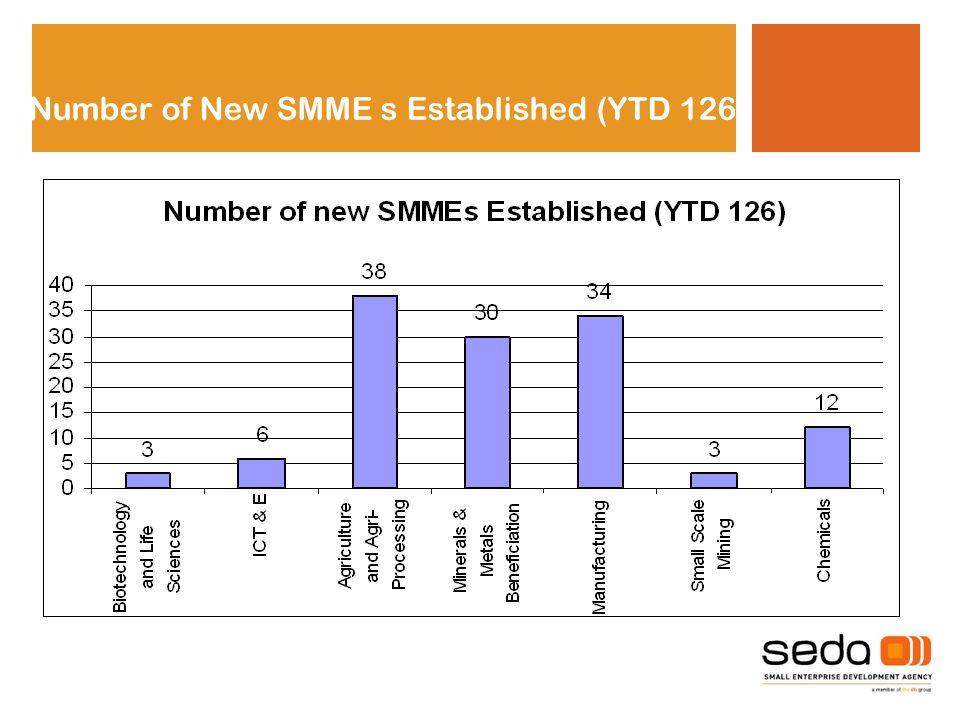 Number of New SMME s Established (YTD 126)