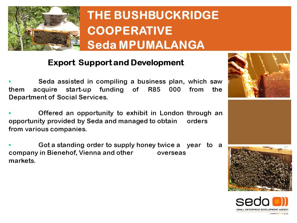 THE BUSHBUCKRIDGE COOPERATIVE Seda MPUMALANGA Export Support and Development Seda assisted in compiling a business plan, which saw them acquire start-up funding of R from the Department of Social Services.