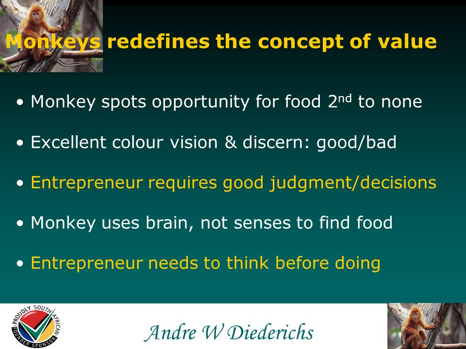 Andre W Andre W Diederichs Monkeys redefines the concept of value Globalisation reshapes the marketplace Changing concept of value – lifelong learning Need to stay relevant to survive Monkey speeds to deliver good example Sailing Wen - Taiwan