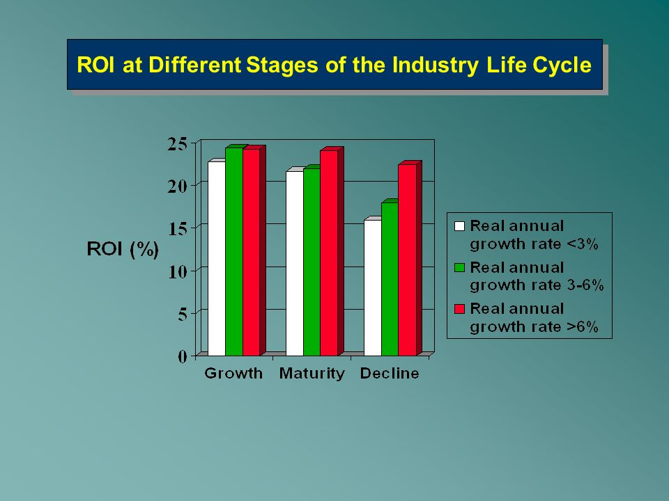 ROI at Different Stages of the Industry Life Cycle
