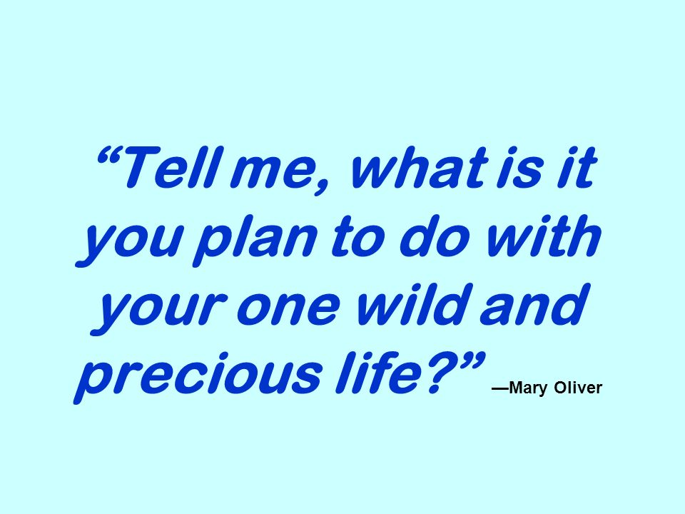 Tell me, what is it you plan to do with your one wild and precious life Mary Oliver