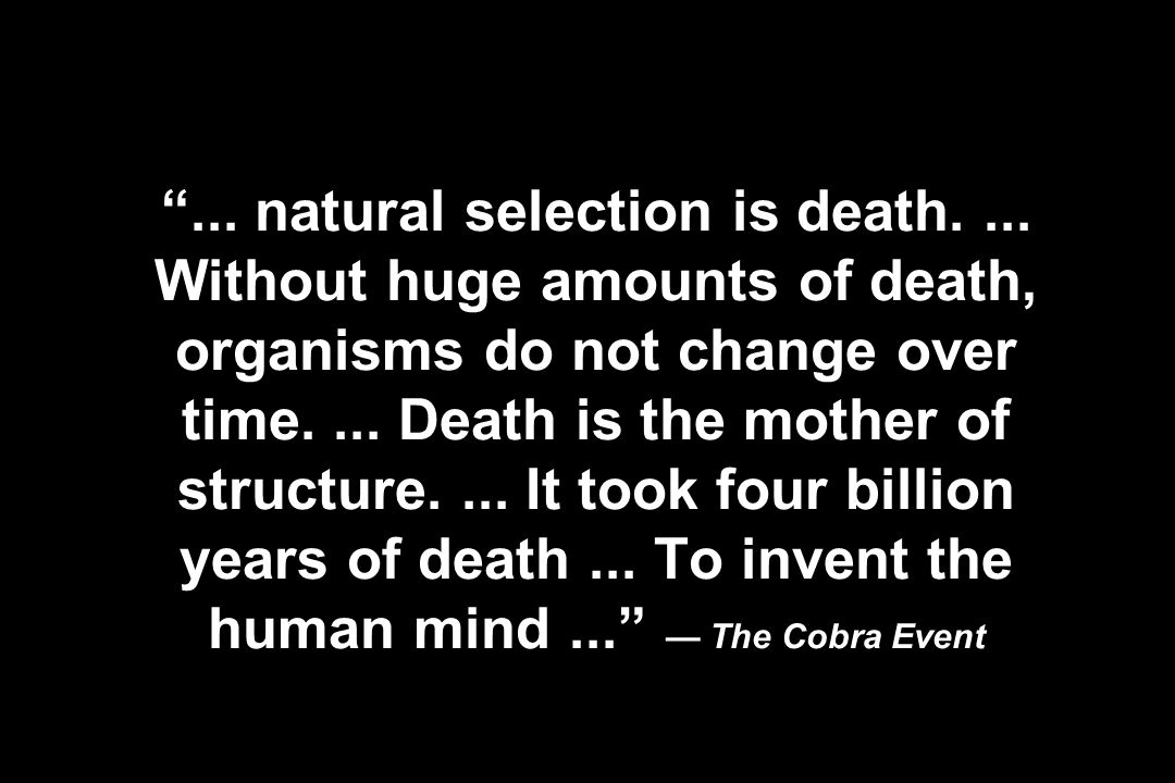 ... natural selection is death.... Without huge amounts of death, organisms do not change over time.... Death is the mother of structure.... It took f
