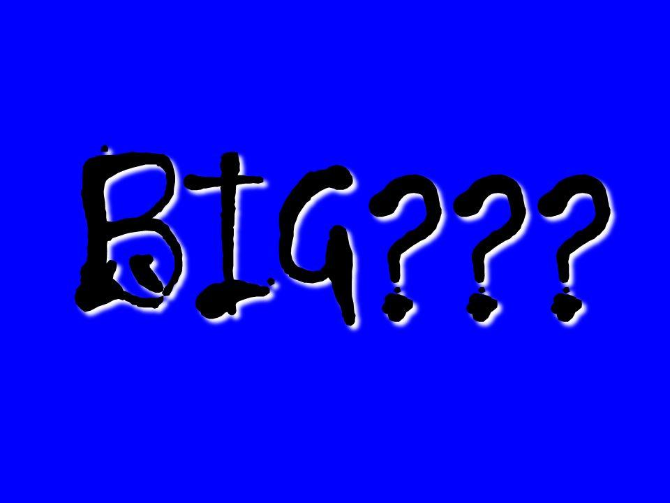 BIG???