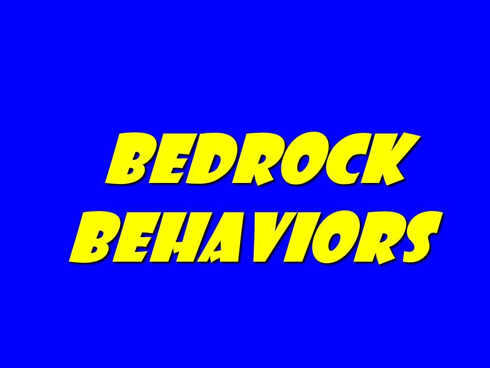 bedrock behaviors