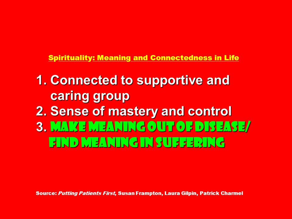1. Connected to supportive and caring group 2. Sense of mastery and control 3. Make meaning out of disease/ find meaning in suffering Spirituality: Me