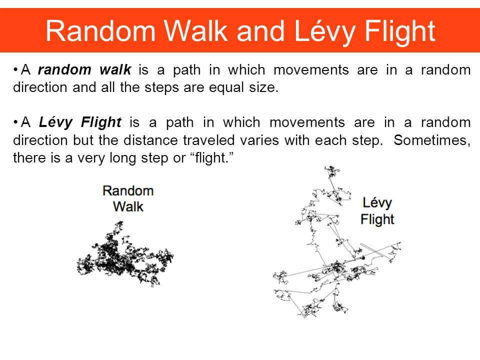 Tracking the Spread of Information Researchers found that information moving through a network follow a path between a random walk and Lévy Flight.