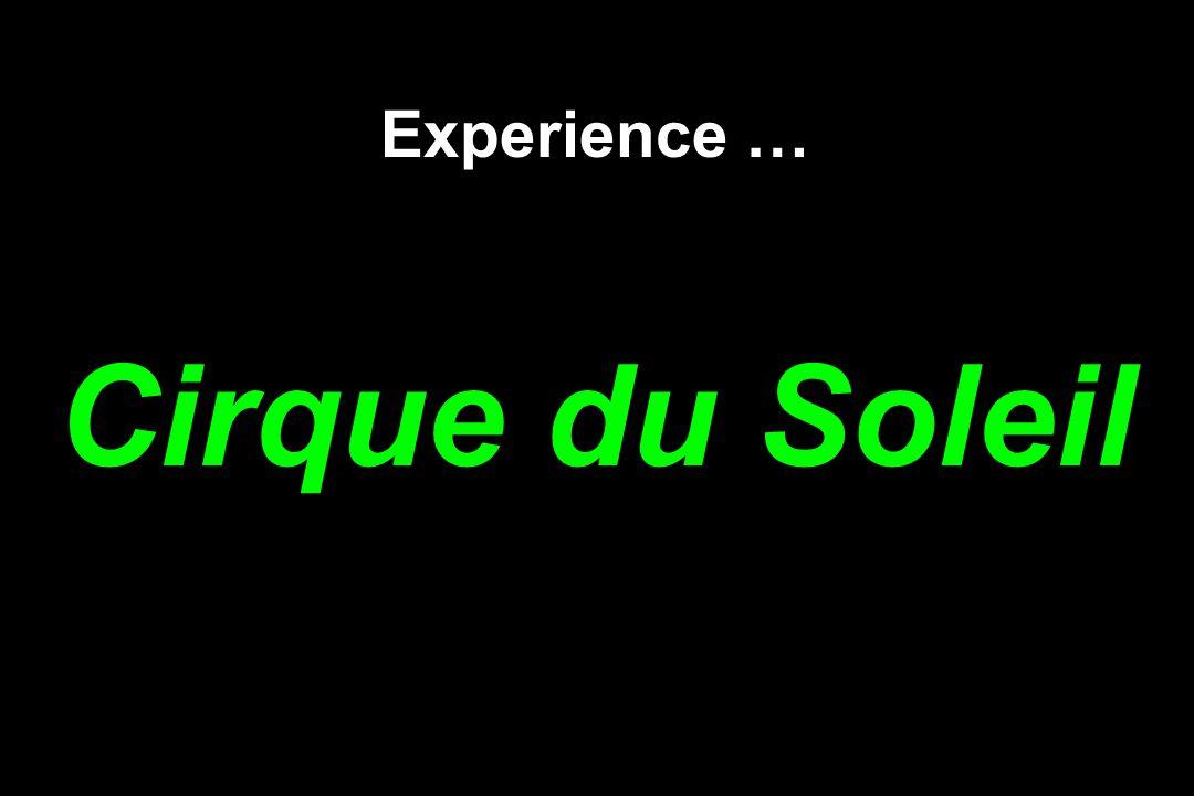 Experience … Cirque du Soleil