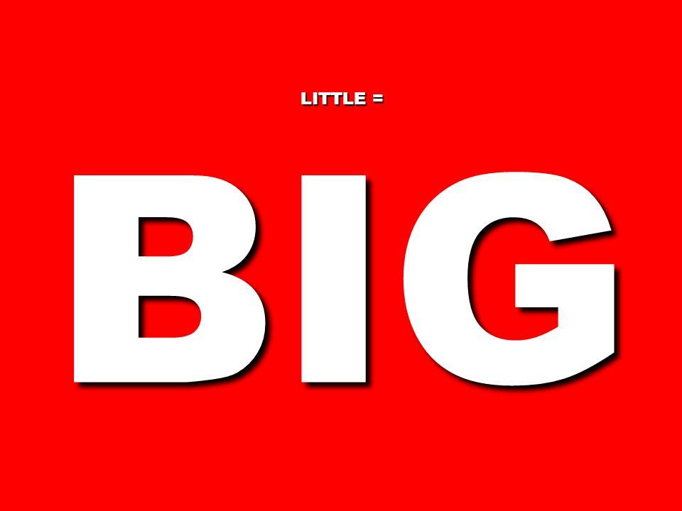 LITTLE = BIG