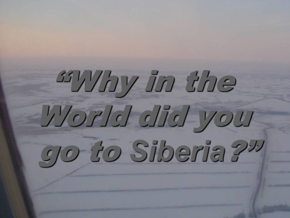 Why in the World did you go to Siberia ? go to Siberia ?