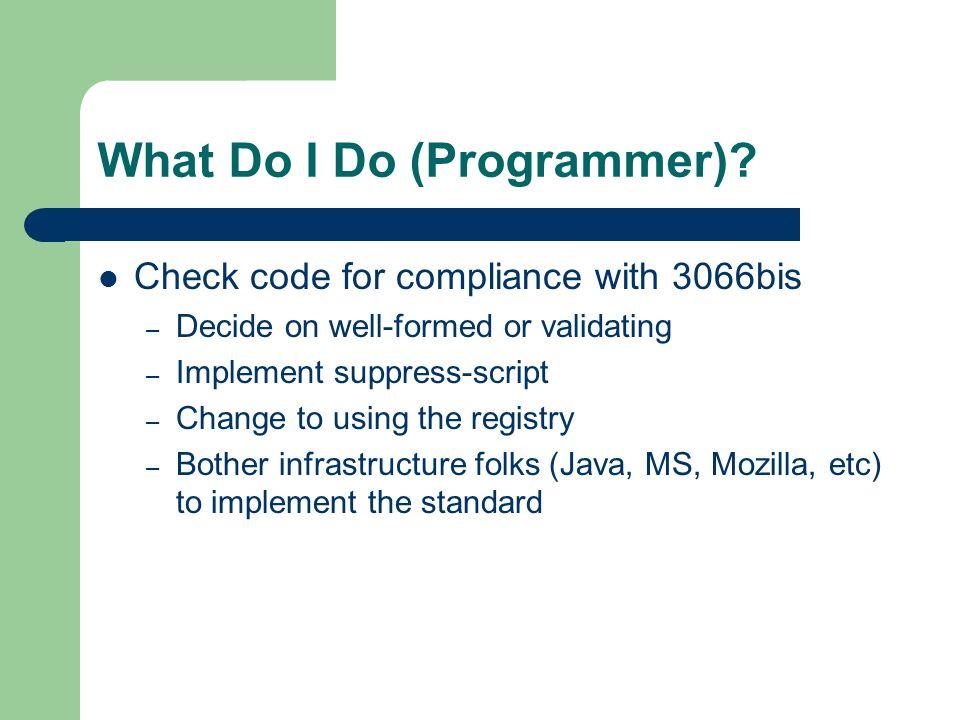 What Do I Do (Programmer).