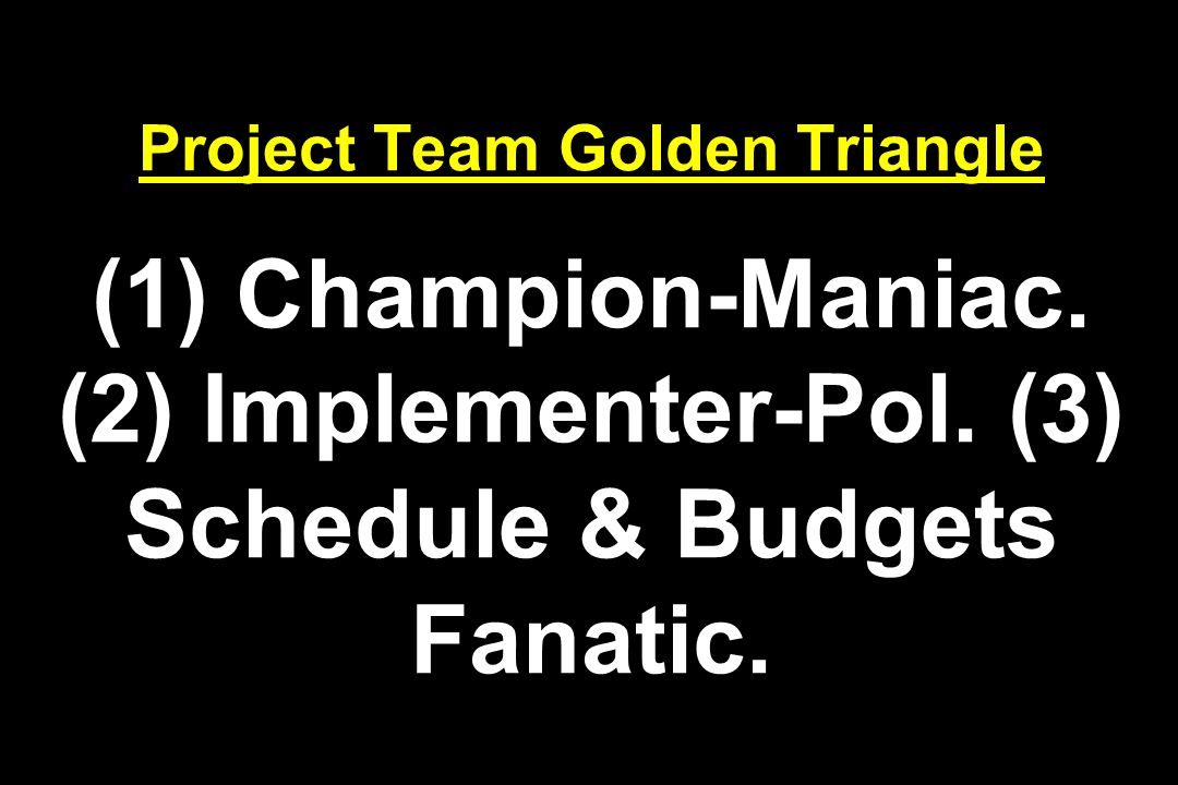 Project Team Golden Triangle (1) Champion-Maniac. (2) Implementer-Pol. (3) Schedule & Budgets Fanatic.
