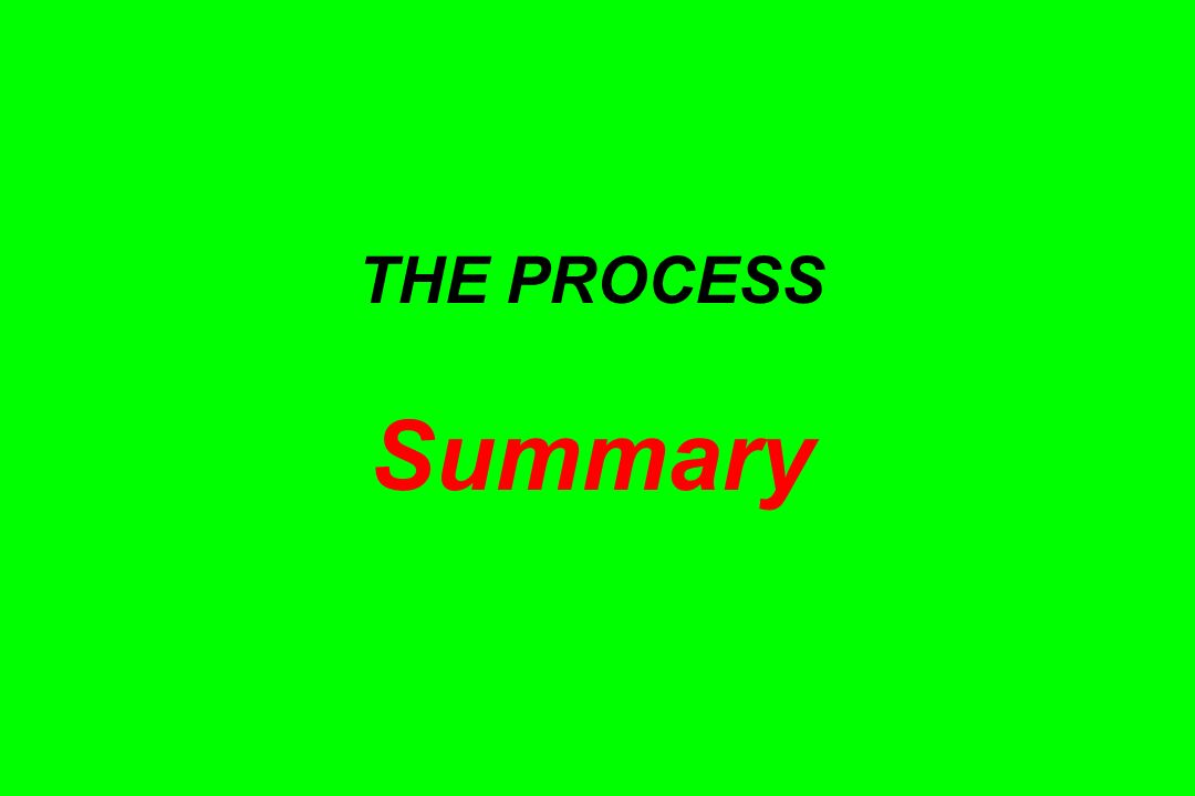 THE PROCESS Summary