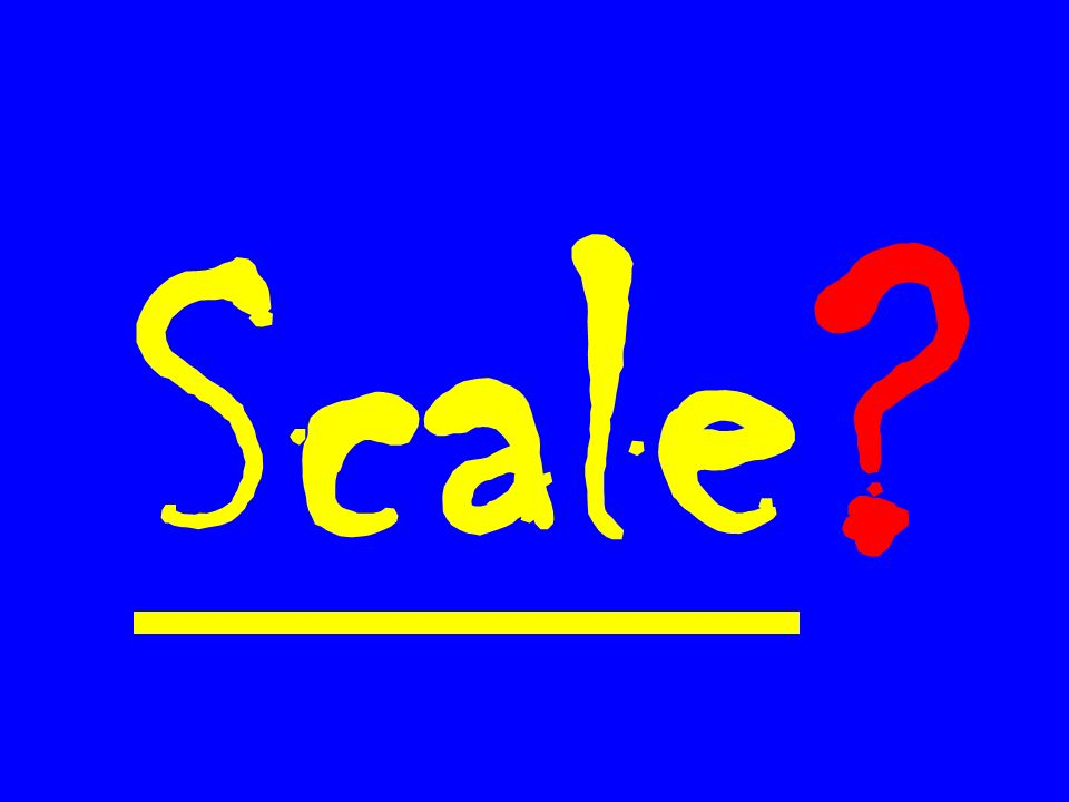 Scale ?