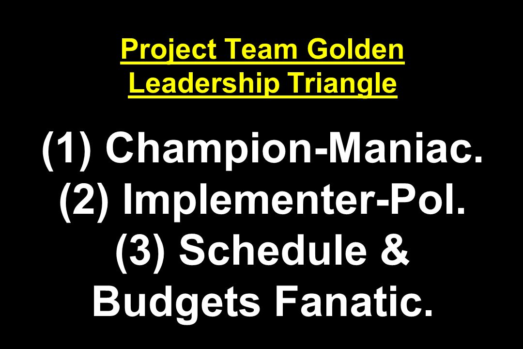 Project Team Golden Leadership Triangle (1) Champion-Maniac. (2) Implementer-Pol. (3) Schedule & Budgets Fanatic.