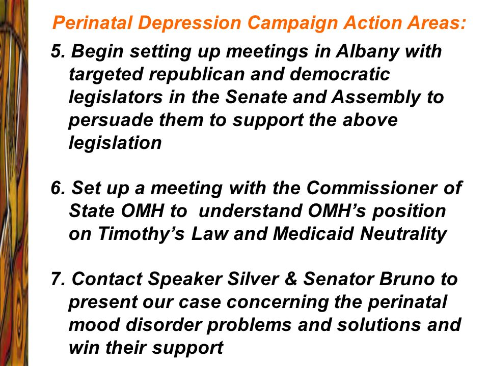 Perinatal Depression Campaign Action Areas: 5. Begin setting up meetings in Albany with targeted republican and democratic legislators in the Senate a