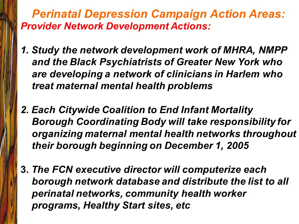 Perinatal Depression Campaign Action Areas: Provider Network Development Actions: 1. Study the network development work of MHRA, NMPP and the Black Ps