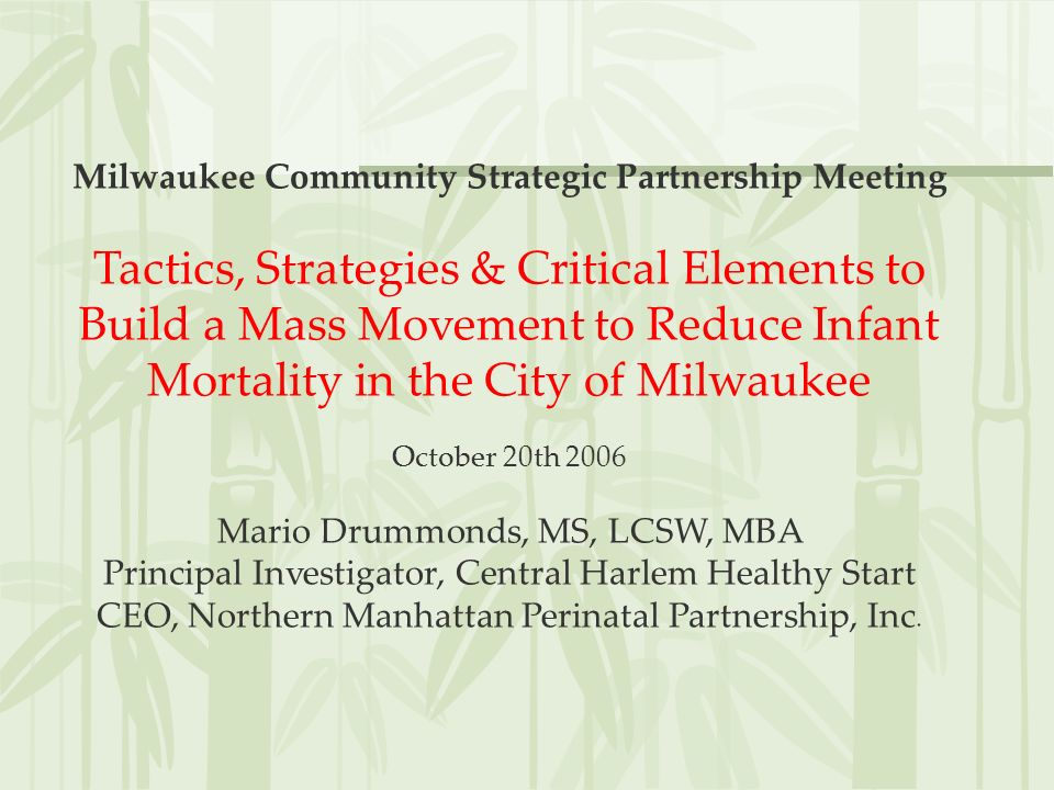 Milwaukee Community Strategic Partnership Meeting Tactics, Strategies & Critical Elements to Build a Mass Movement to Reduce Infant Mortality in the C