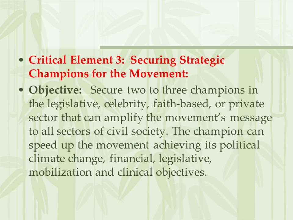 Action Items: 1.Get planning committee members to recommend various movement champions.