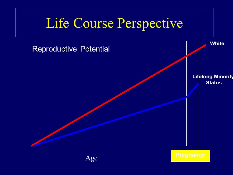 Life Course Perspective Pregnancy White Lifelong Minority Status Reproductive Potential Age