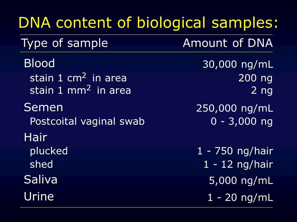DNA content of biological samples: Type of sampleAmount of DNA Blood 30,000 ng/mL stain 1 cm in area200 ng stain 1 mm in area2 ng Semen 250,000 ng/mL Postcoital vaginal swab0 - 3,000 ng Hair plucked shed 1 - 750 ng/hair 1 - 12 ng/hair Saliva Urine 5,000 ng/mL 1 - 20 ng/mL 2 2