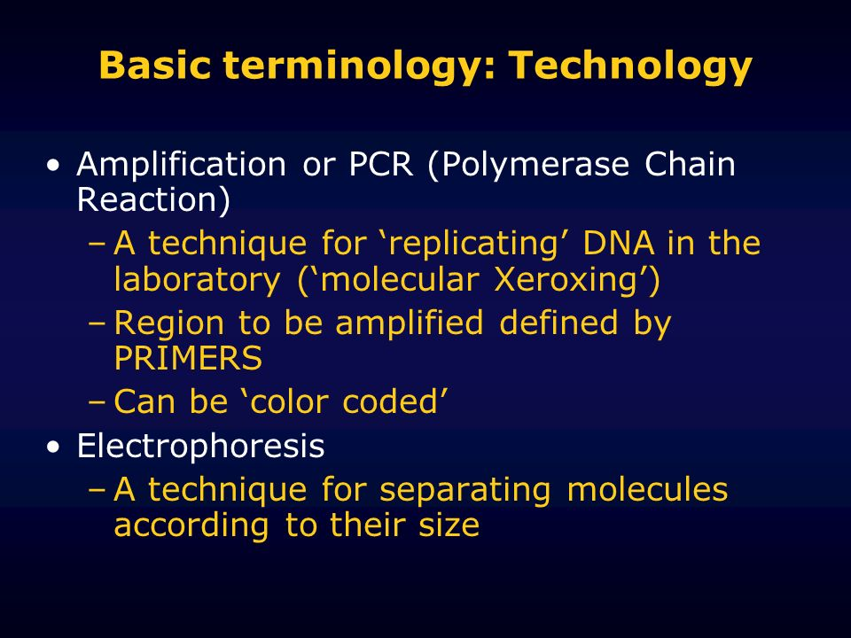 Basic terminology: Technology Amplification or PCR (Polymerase Chain Reaction) –A technique for replicating DNA in the laboratory (molecular Xeroxing)