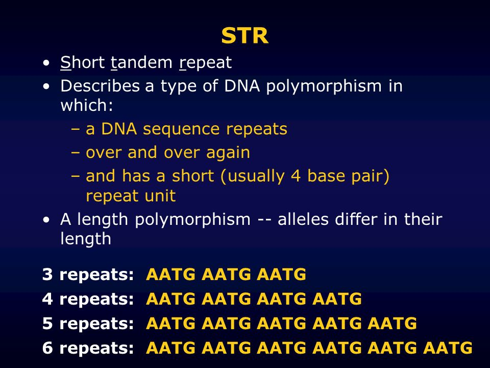 STR Short tandem repeat Describes a type of DNA polymorphism in which: –a DNA sequence repeats –over and over again –and has a short (usually 4 base p