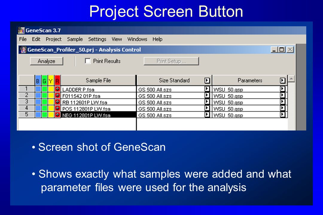 Project Screen Button Screen shot of GeneScan Shows exactly what samples were added and what parameter files were used for the analysis