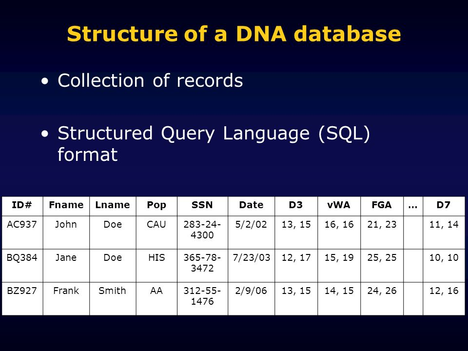 Structure of a DNA database Collection of records Structured Query Language (SQL) format ID#FnameLnamePopSSNDateD3vWAFGA…D7 AC937JohnDoeCAU283-24- 4300 5/2/0213, 1516, 1621, 2311, 14 BQ384JaneDoeHIS365-78- 3472 7/23/0312, 1715, 1925, 2510, 10 BZ927FrankSmithAA312-55- 1476 2/9/0613, 1514, 1524, 2612, 16