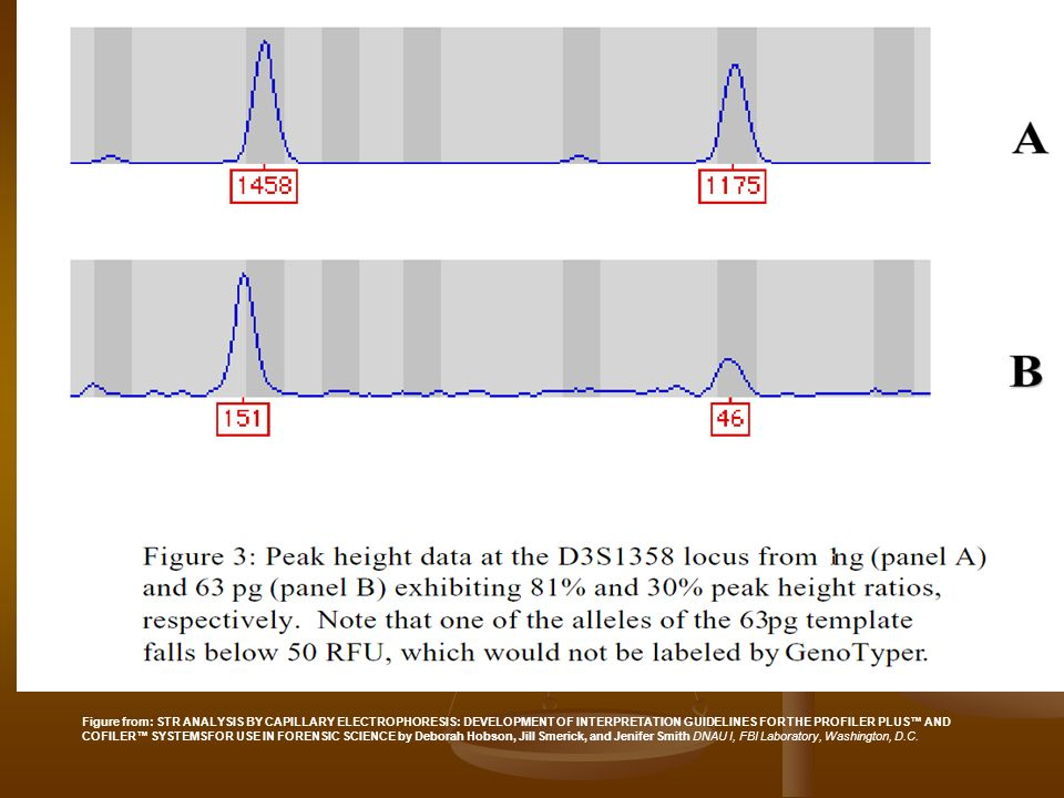 Figure from: STR ANALYSIS BY CAPILLARY ELECTROPHORESIS: DEVELOPMENT OF INTERPRETATION GUIDELINES FOR THE PROFILER PLUS AND COFILER SYSTEMSFOR USE IN FORENSIC SCIENCE by Deborah Hobson, Jill Smerick, and Jenifer Smith DNAU I, FBI Laboratory, Washington, D.C.
