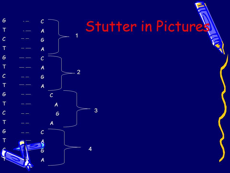 Stutter in Pictures GTCTGTCTGTCTGTCTGTCTGTCTGTCTGTCT C A G A C A G A C A G A C A G A 1 2 3 4