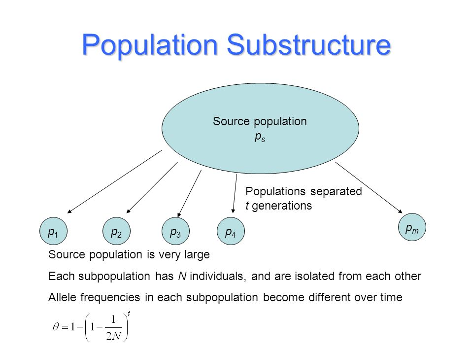 Population Substructure Source population p s p1p1 p2p2 p3p3 p4p4 pmpm Source population is very large Each subpopulation has N individuals, and are i