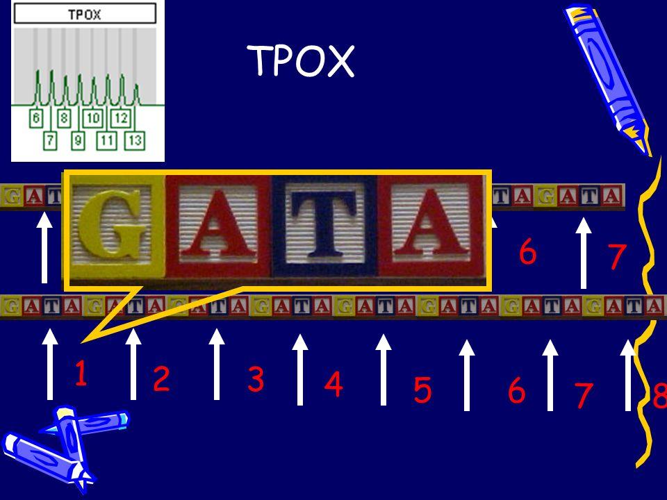 TPOX 1 23456 7 1 23 4 56 78