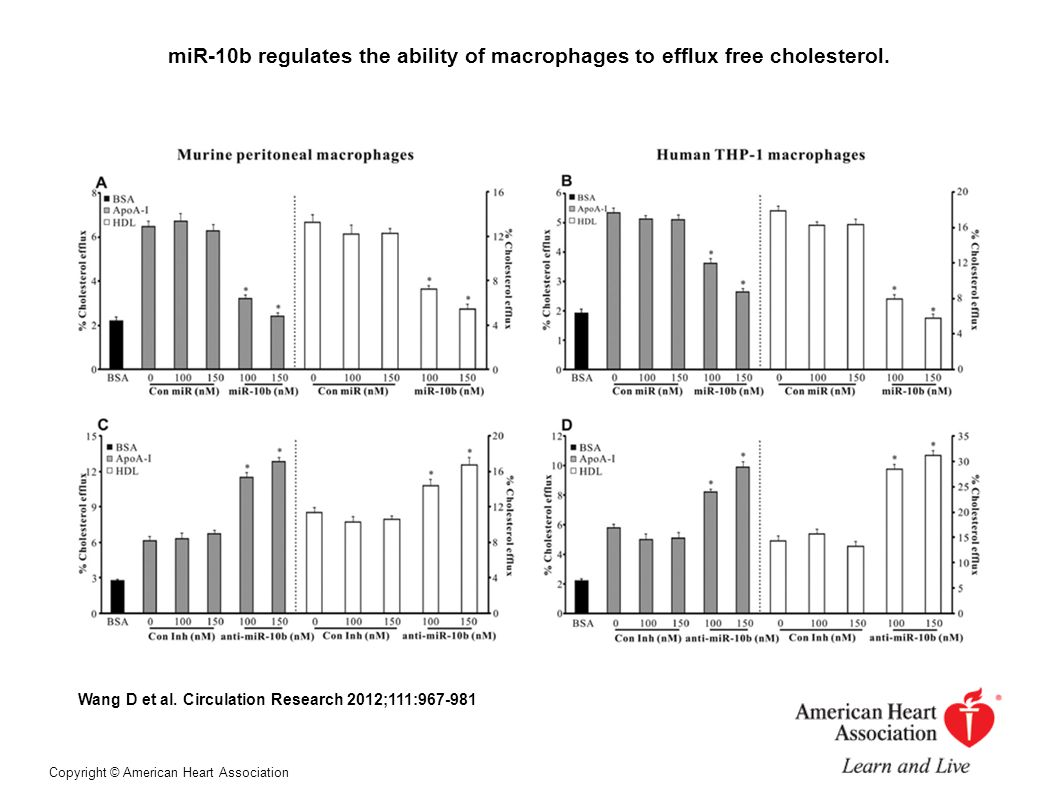 miR-10b regulates the ability of macrophages to efflux free cholesterol.