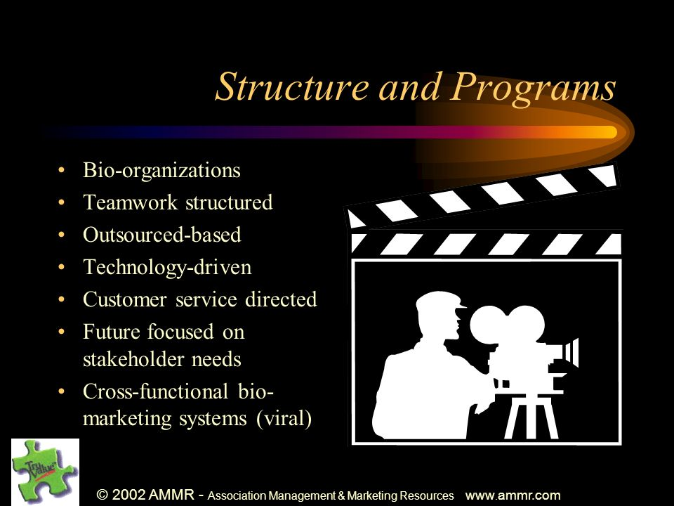 © 2002 AMMR - Association Management & Marketing Resources www. ammr.com Structure and Programs Bio-organizations Teamwork structured Outsourced-based