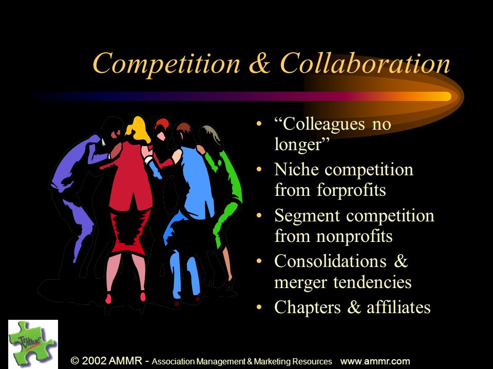 © 2002 AMMR - Association Management & Marketing Resources www. ammr.com Competition & Collaboration Colleagues no longer Niche competition from forpr