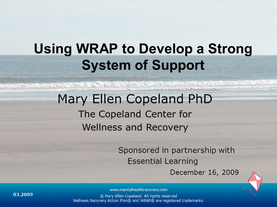 Using WRAP to Develop a Strong System of Support Mary Ellen Copeland PhD The Copeland Center for Wellness and Recovery Sponsored in partnership with E