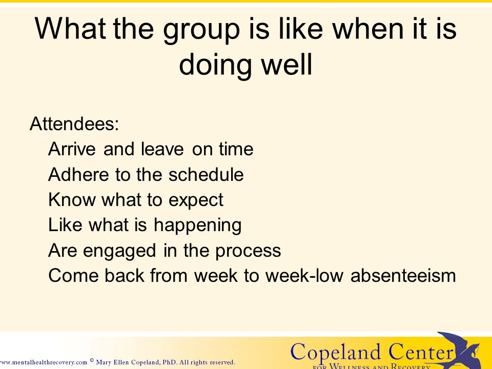 What the group is like when it is doing well Attendees: Arrive and leave on time Adhere to the schedule Know what to expect Like what is happening Are engaged in the process Come back from week to week-low absenteeism