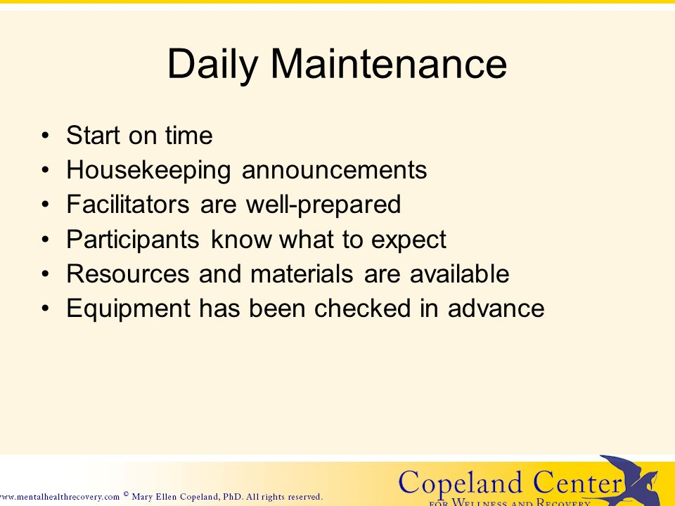 Daily Maintenance Start on time Housekeeping announcements Facilitators are well-prepared Participants know what to expect Resources and materials are available Equipment has been checked in advance