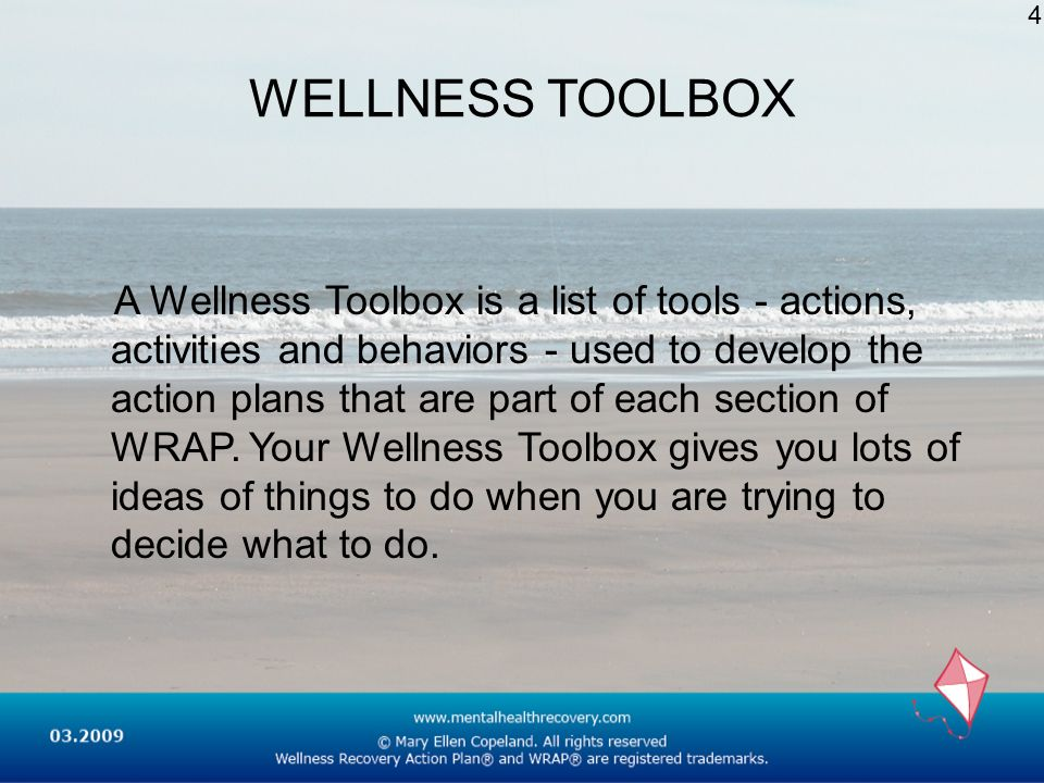 WELLNESS TOOLBOX A Wellness Toolbox is a list of tools - actions, activities and behaviors - used to develop the action plans that are part of each se
