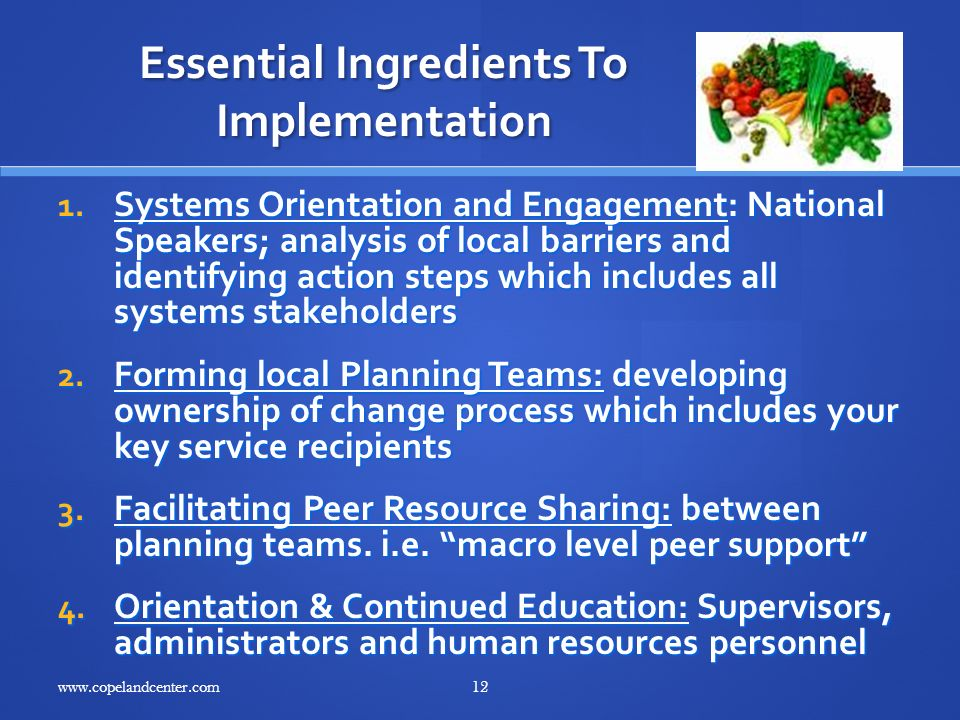 Essential Ingredients To Implementation 1.