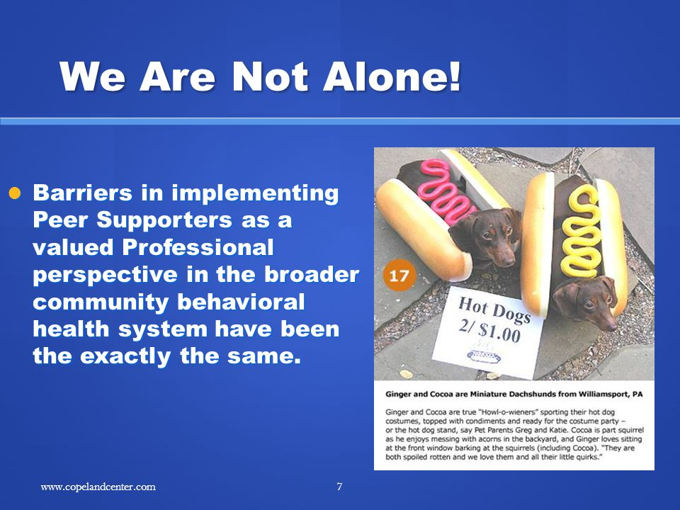 We Are Not Alone! Barriers in implementing Peer Supporters as a valued Professional perspective in the broader community behavioral health system have