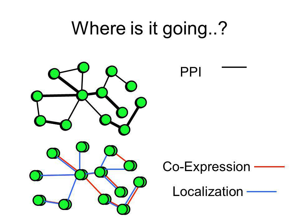 Where is it going..? PPI Co-Expression Localization