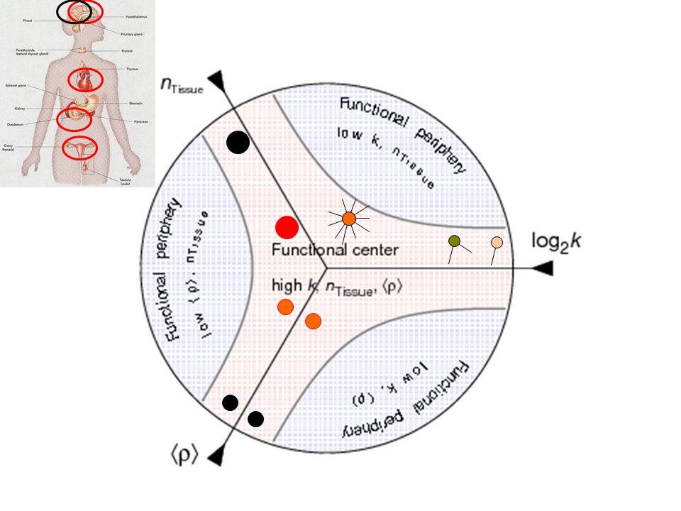 p53 network (mammals) P53 P(k)