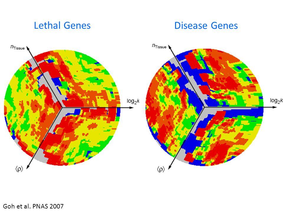 Lethal Genes Disease Genes Goh et al. PNAS 2007