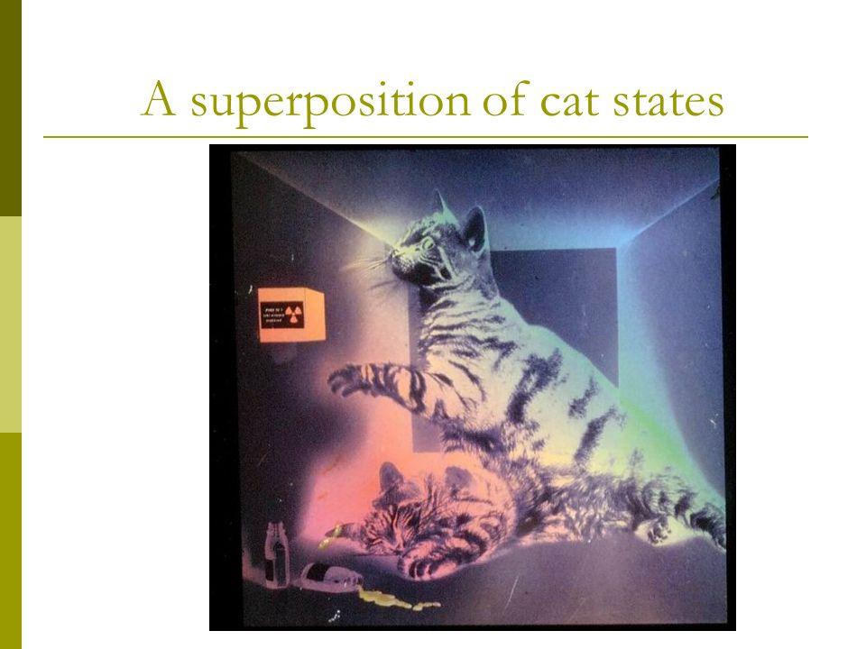 Shrödingers Cat
